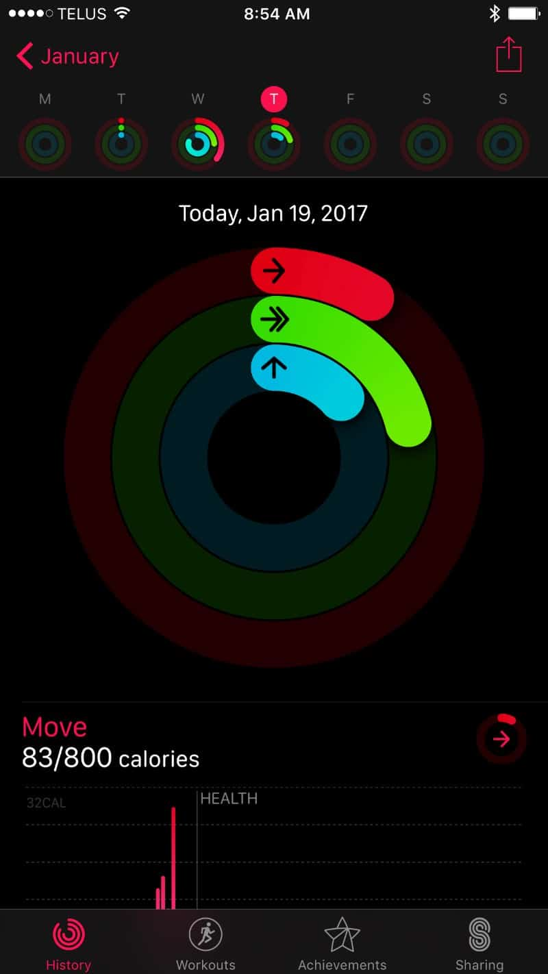Daily activity screen on the Apple Series 2 Smartwatch app