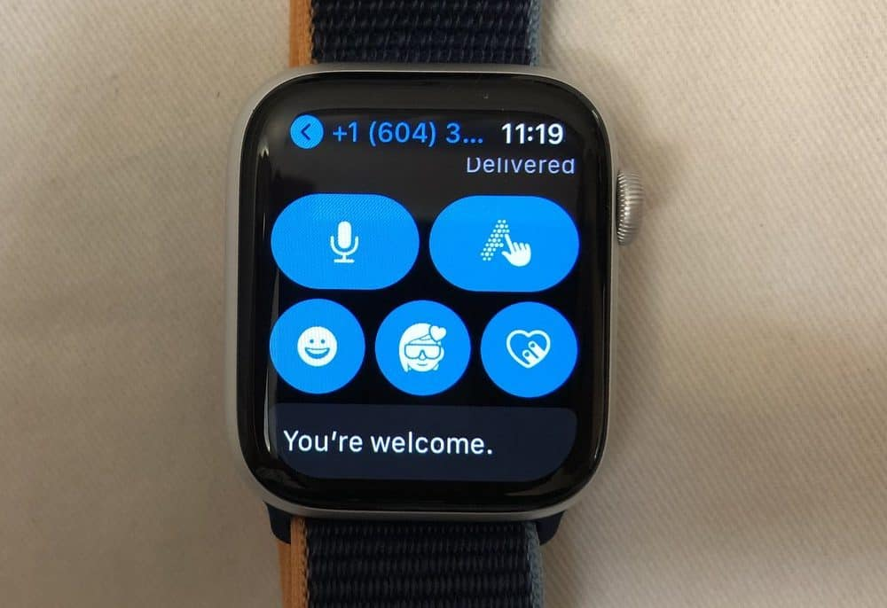 Apple Watch Series 6 input methods